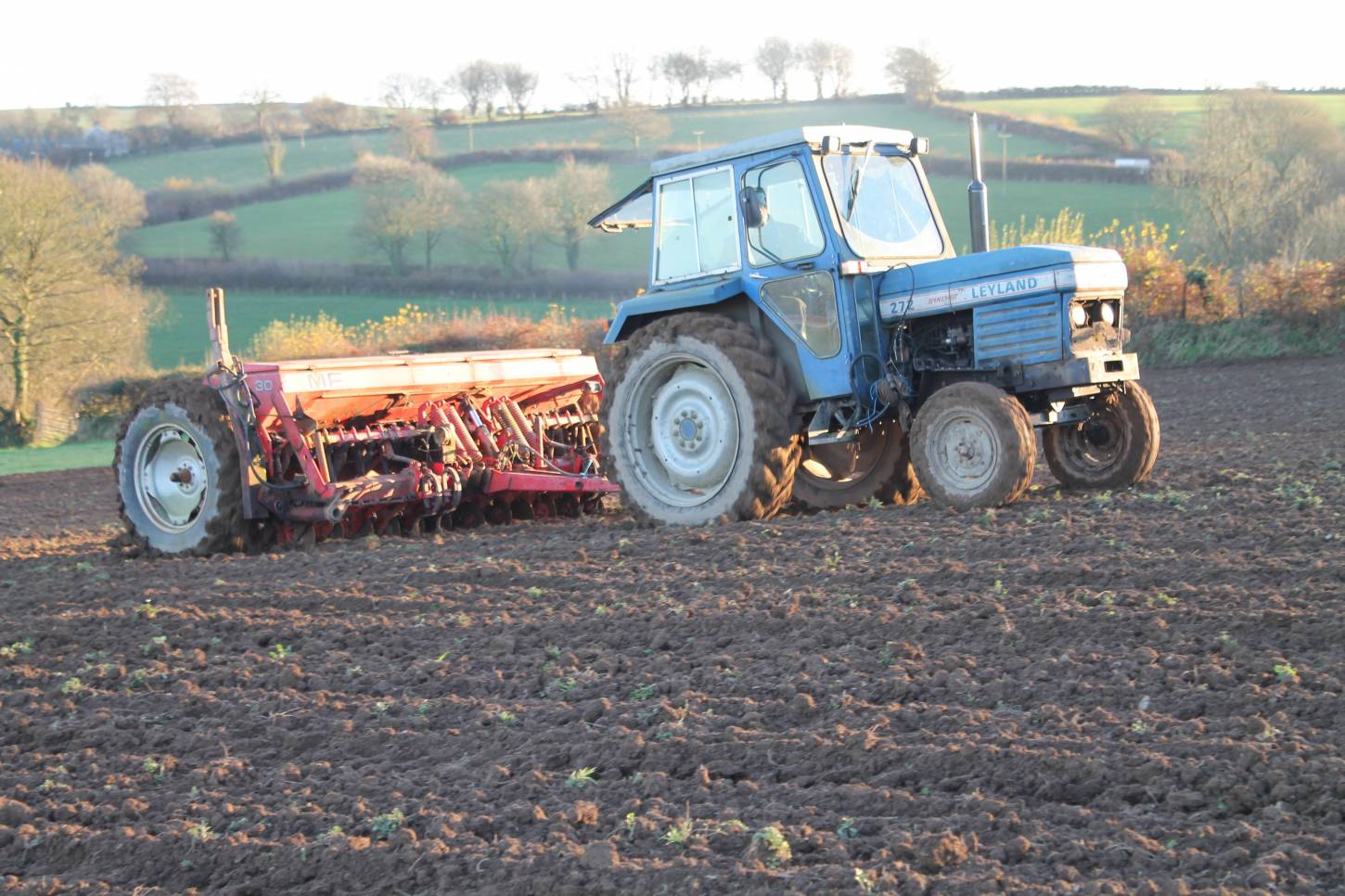 Comparing spring wheats in Carmarthenshire -drilling - 4:39pm&nbsp;30<sup>th</sup>&nbsp;Nov.&nbsp;'14