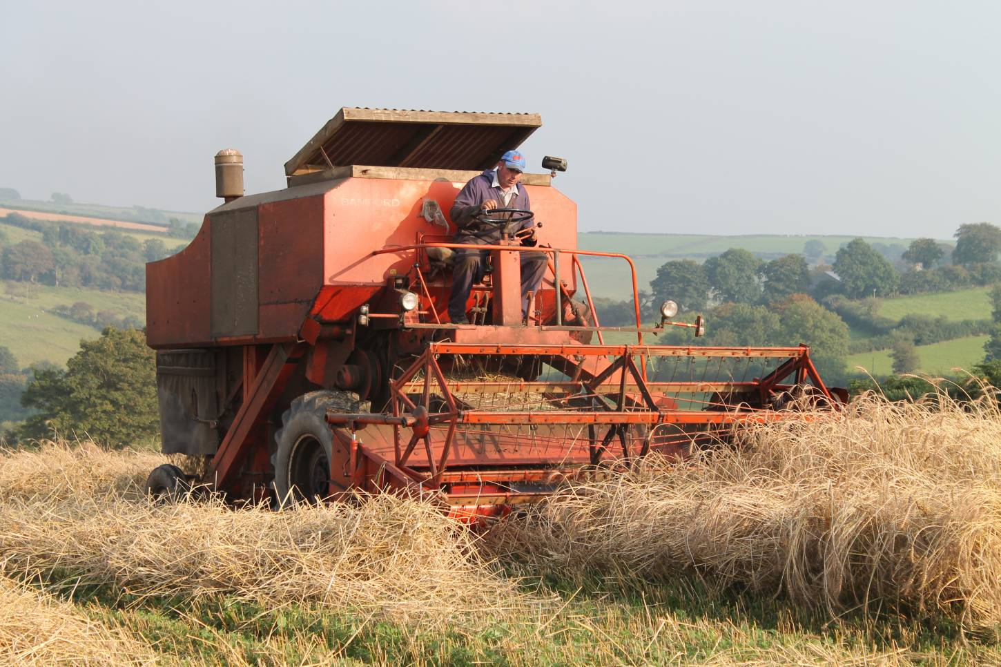 Comparing spring wheats in Carmarthenshire - harvesting April Bearded - 6:11pm&nbsp;4<sup>th</sup>&nbsp;Sep.&nbsp;'14