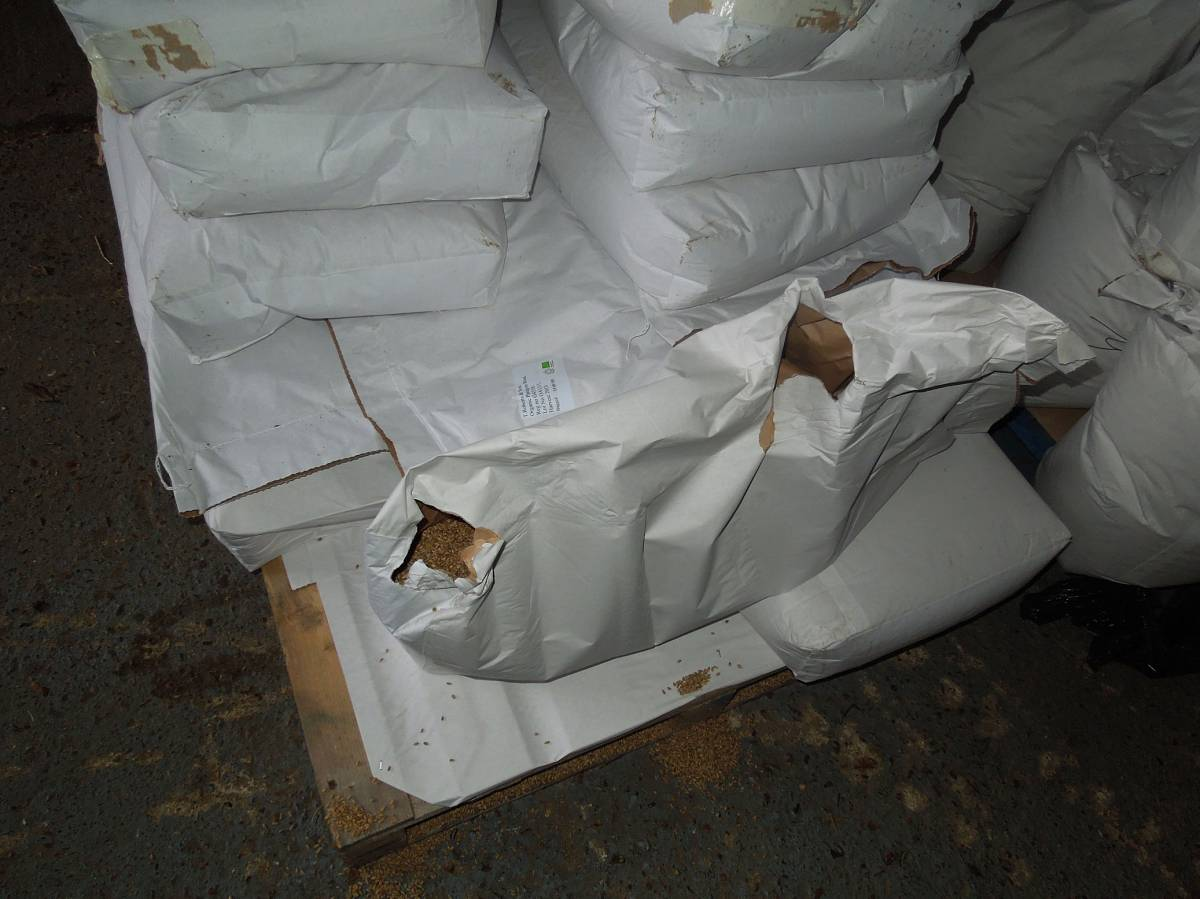 December grain delivery - 11:41am&nbsp;15<sup>th</sup>&nbsp;Dec.&nbsp;'13