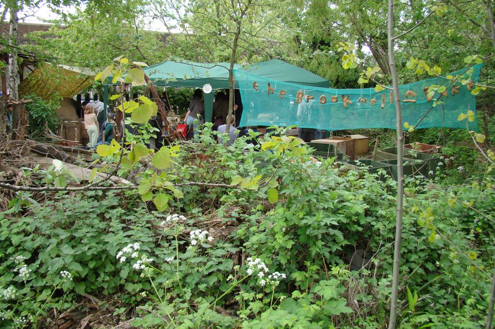 set up on location at Camley Street Nature Reserve behind Kings Cross - food junctions 1/5/10