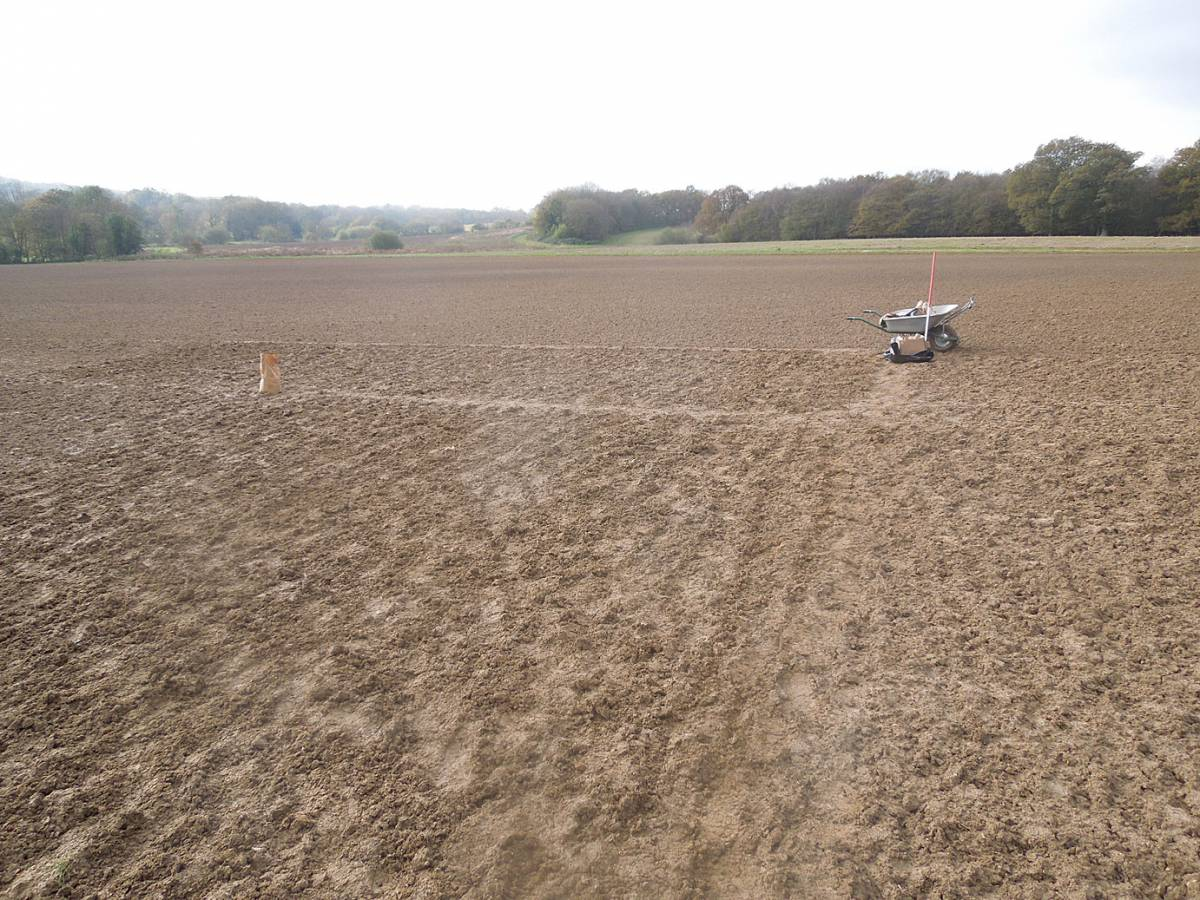 WoWo Farm sowings #2 - 12:22pm&nbsp;7<sup>th</sup>&nbsp;Nov.&nbsp;'12