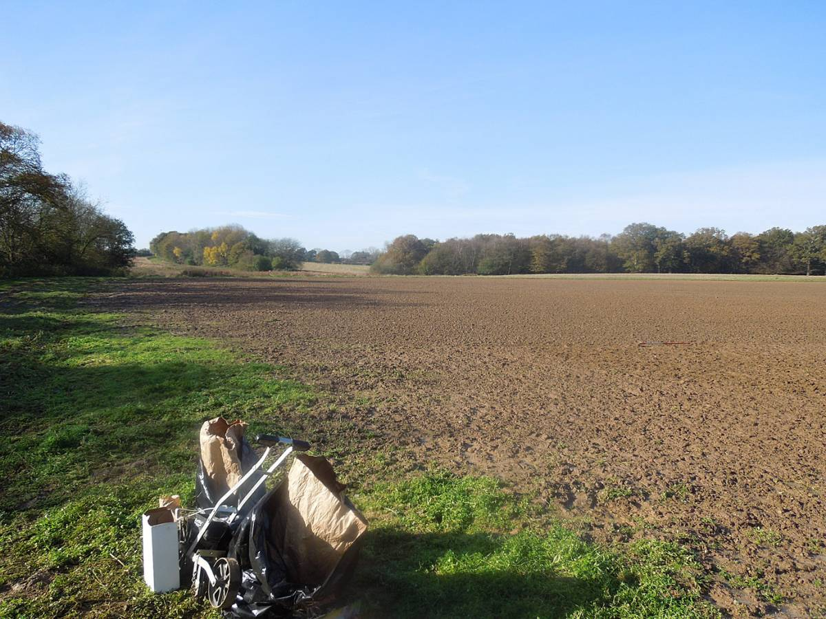 WoWo Farm sowings #2 - 12:32pm&nbsp;6<sup>th</sup>&nbsp;Nov.&nbsp;'12