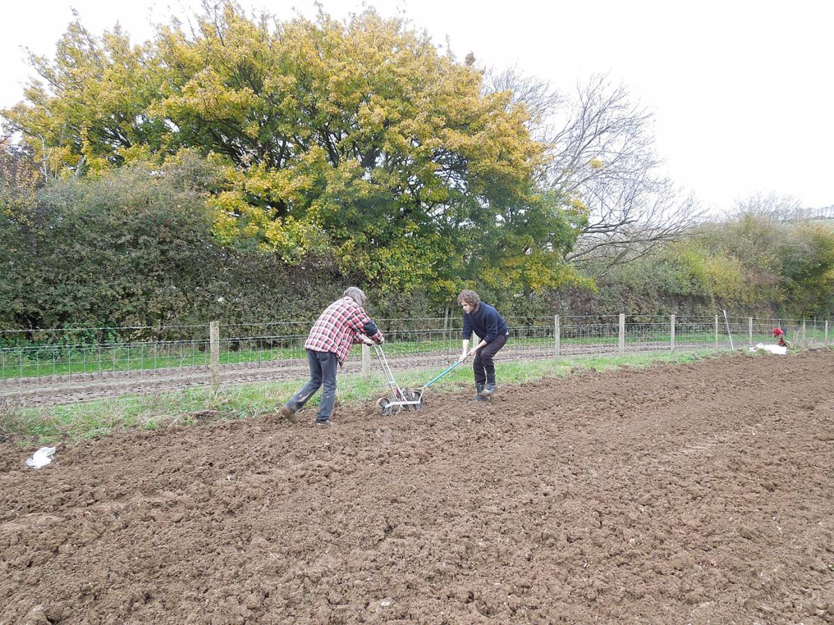 sowing on Perry Court Farm nr. Canterbury with Faversham baker James Thorn, push and pull - 1:40pm&nbsp;12<sup>th</sup>&nbsp;Nov.&nbsp;'12