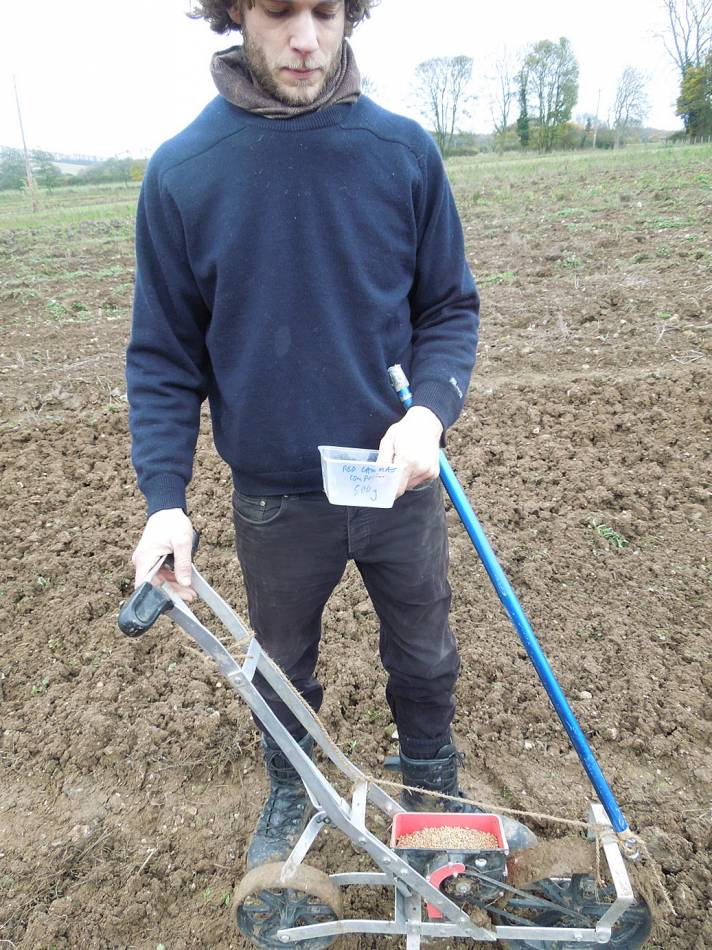 James with some Red Lammas, sowing on Perry Court Farm nr. Canterbury - 3:01pm&nbsp;12<sup>th</sup>&nbsp;Nov.&nbsp;'12
