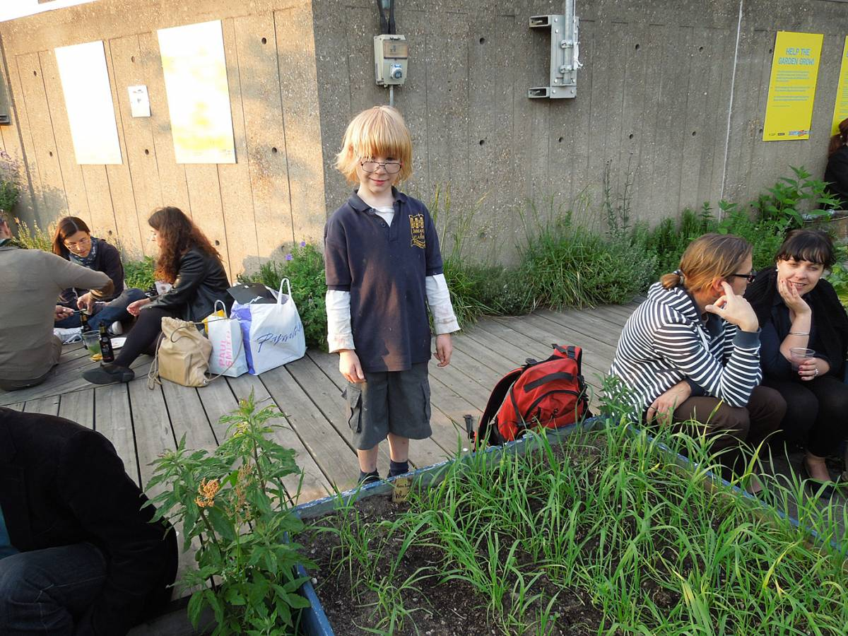 Damant heritage spring mix on Queen Liz hall roof garden (+ Josh) - 6:59pm&nbsp;6<sup>th</sup>&nbsp;Jun.&nbsp;'13