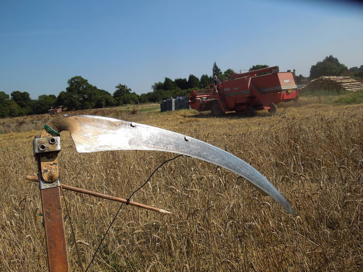 scythe versus combine, this time scythe won, WoWo final harvest 2013 - 11:58am&nbsp;4<sup>th</sup>&nbsp;Sep.&nbsp;'13