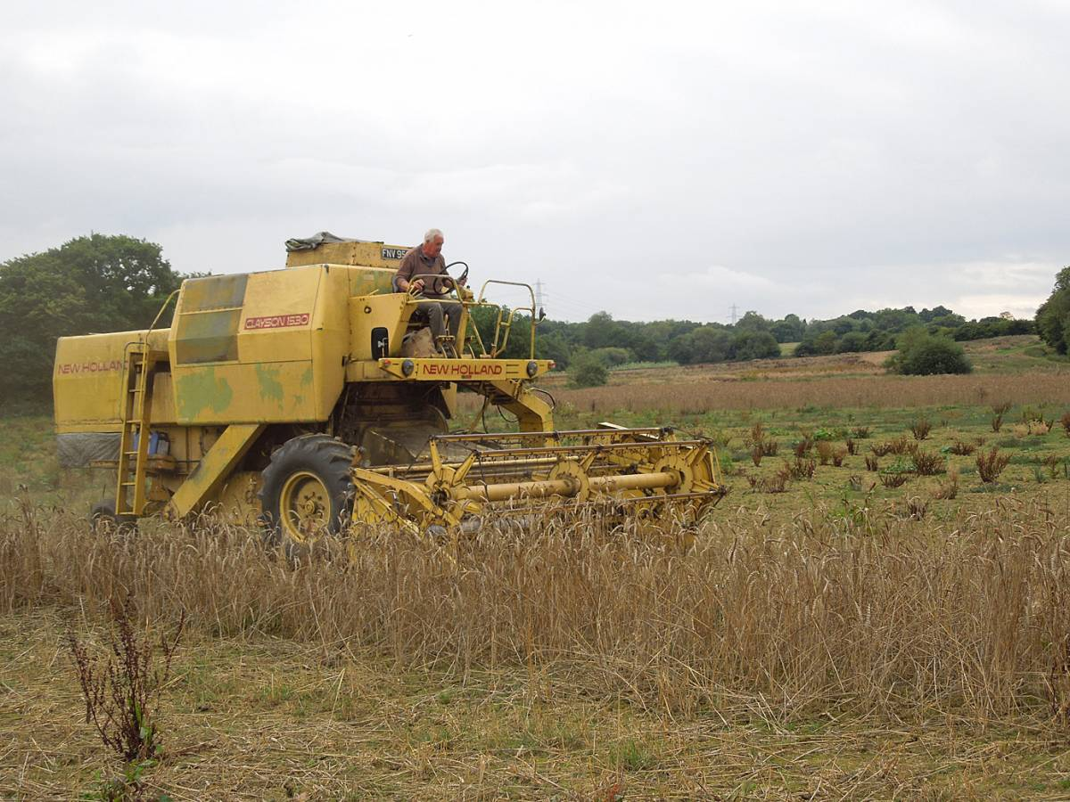 final harvest starts with new/old combine, WoWo - 2:05pm&nbsp;11<sup>th</sup>&nbsp;Sep.&nbsp;'13