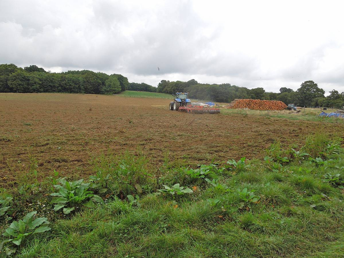 WoWo field gets cultivated day after harvest in, - 3:08pm&nbsp;12<sup>th</sup>&nbsp;Sep.&nbsp;'13