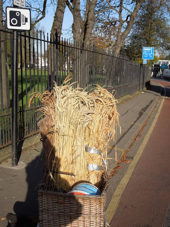 harvest on way home from allotemnts via Borckwell Park - 10:15am&nbsp;14<sup>th</sup>&nbsp;Nov.&nbsp;'13