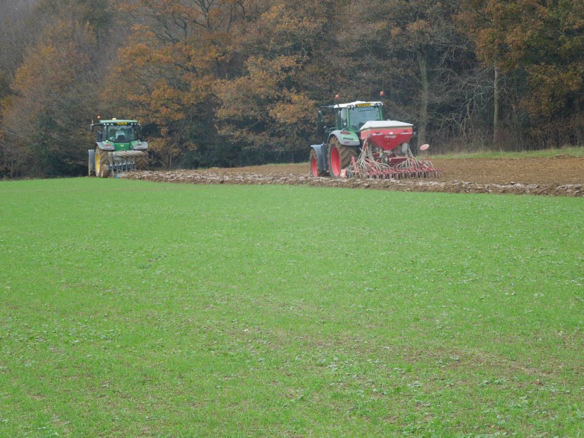 last winter wheat goes in at WoWo - 12:58pm&nbsp;20<sup>th</sup>&nbsp;Nov.&nbsp;'14