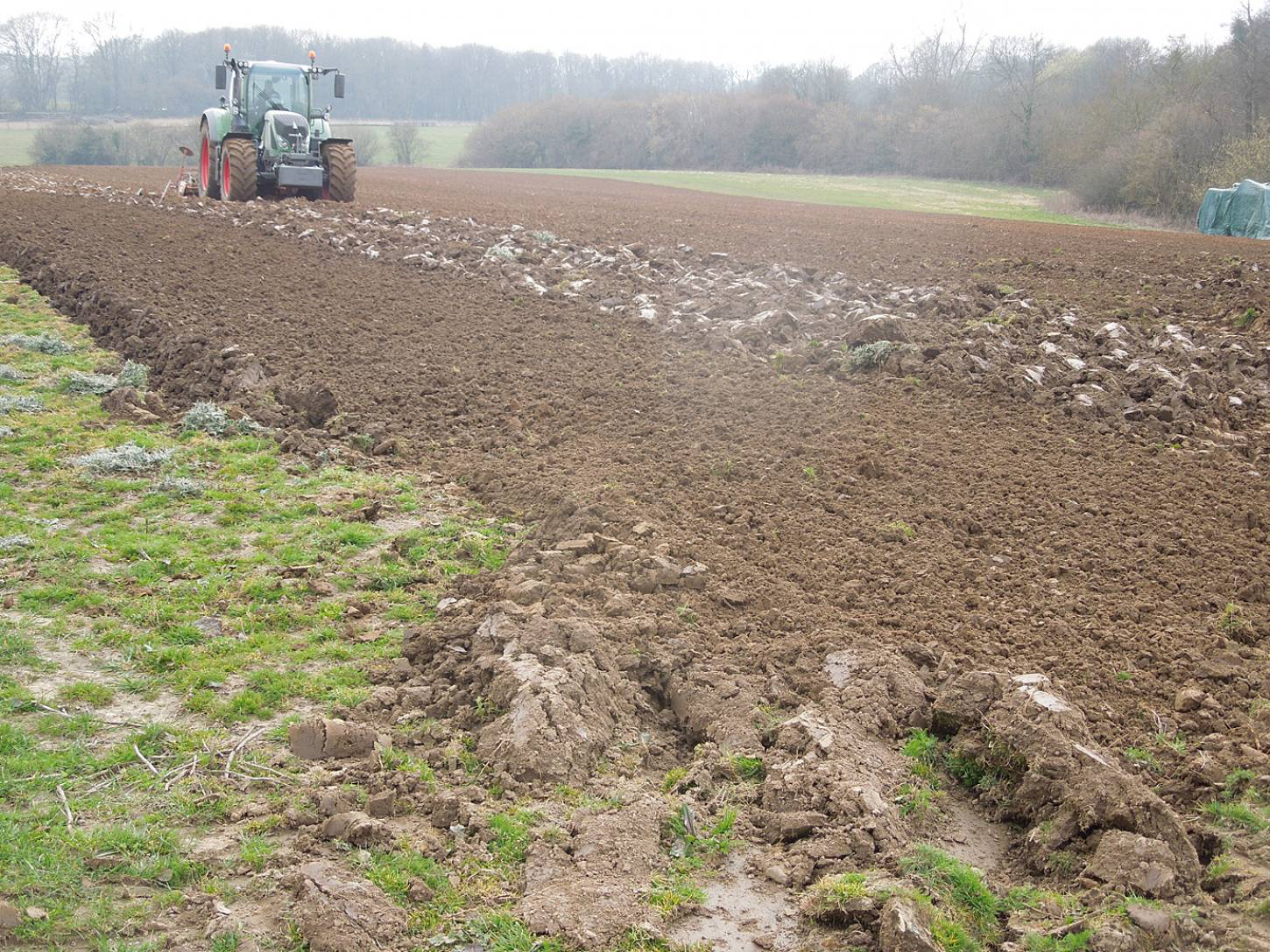 Spring sowing WoWo Farm - 4:48pm&nbsp;19<sup>th</sup>&nbsp;Mar.&nbsp;'15