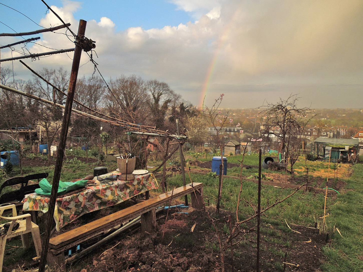 early Spring Rosendale Allotments - 6:45pm&nbsp;24<sup>th</sup>&nbsp;Mar.&nbsp;'15