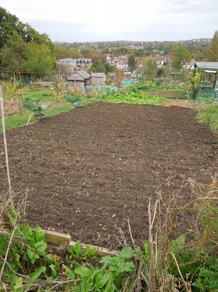 Plots 35 and 36 sown - 4:09pm&nbsp;26<sup>th</sup>&nbsp;Oct.&nbsp;'14