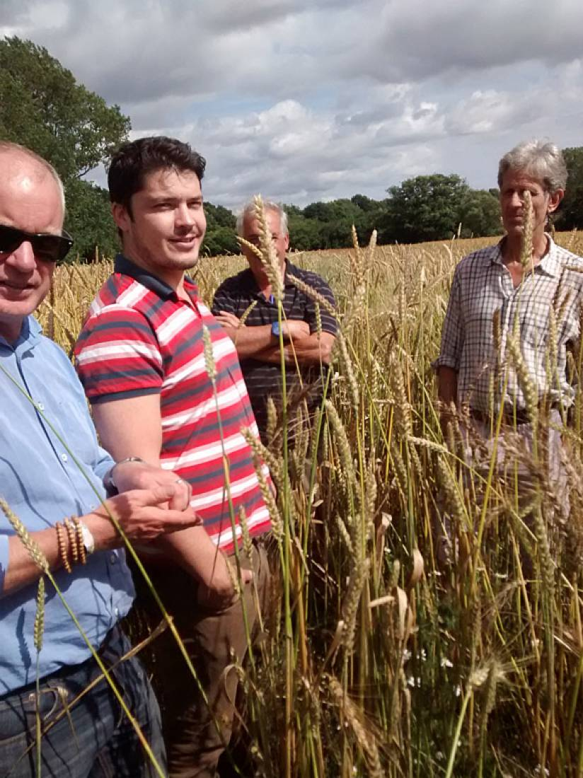 Farmers Michael Duveen, John Pawsey with baker alex Jacobs and our combine man, Tim Tuson inspect the crop - 3:35pm&nbsp;23<sup>rd</sup>&nbsp;Jul.&nbsp;'15  <a href='http://maps.google.com/?t=h&q=50.993614,-0.004517&z=15' target=_blank><img src='http://www.brockwell-bake.org.uk/img/marker.png' style='border:none;vertical-align:top' height=16px></a>