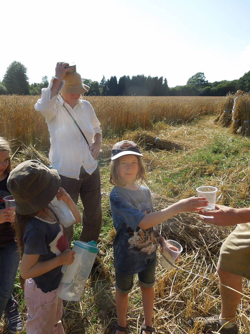 WoWo manual harvest - the water team arrives - 5:00pm&nbsp;8<sup>th</sup>&nbsp;Aug.&nbsp;'15