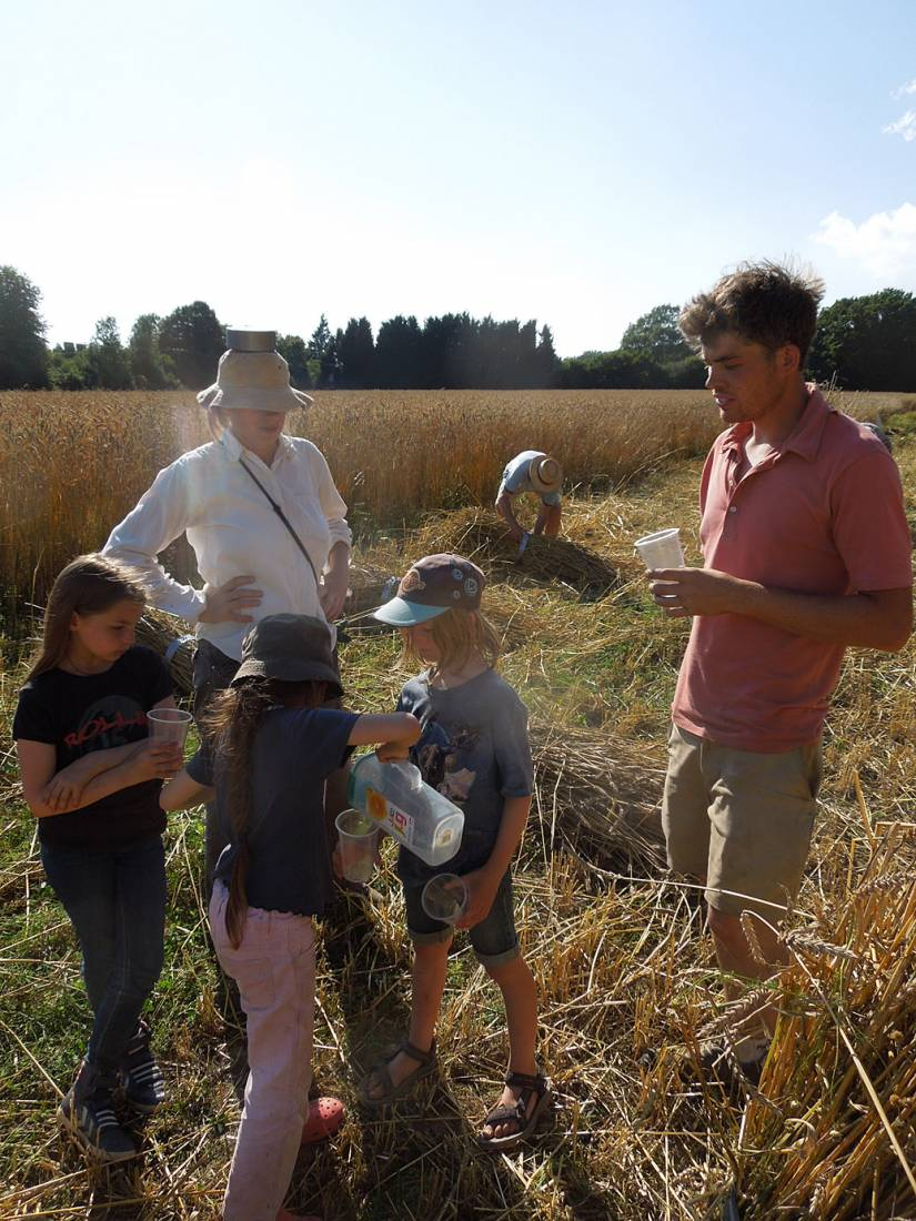 WoWo manual harvest - the water team arrives - 5:01pm&nbsp;8<sup>th</sup>&nbsp;Aug.&nbsp;'15