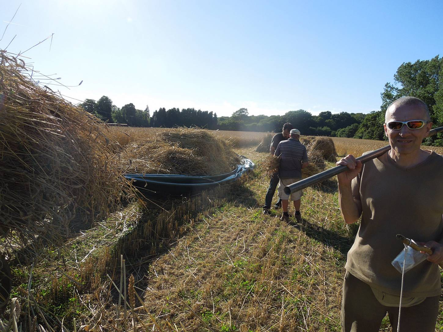 WoWo manual harvest - harvest home - 5:46pm&nbsp;9<sup>th</sup>&nbsp;Aug.&nbsp;'15