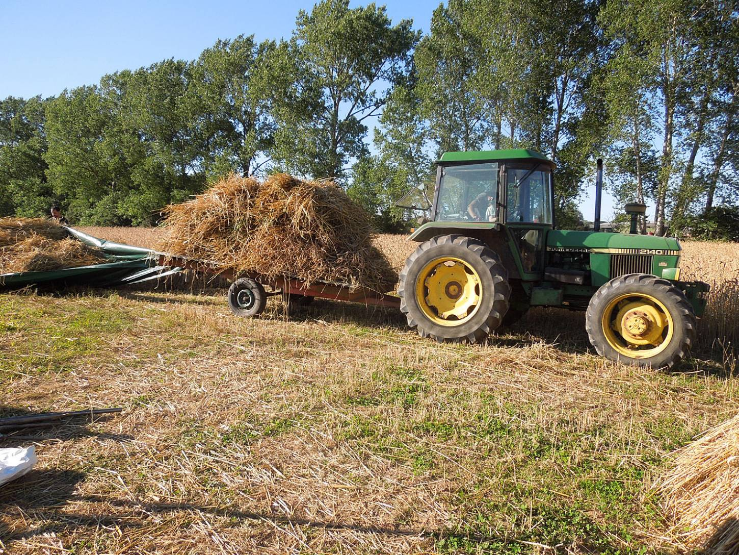WoWo manual harvest - harvest home - 5:48pm&nbsp;9<sup>th</sup>&nbsp;Aug.&nbsp;'15