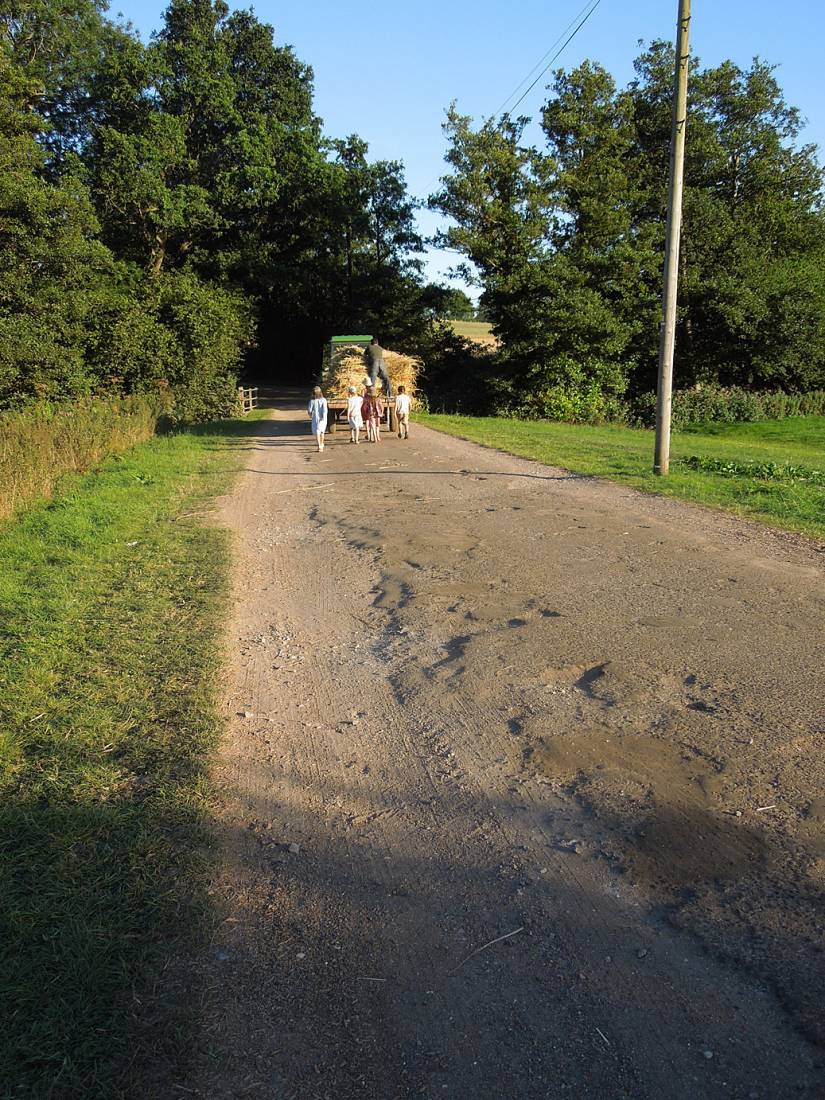 WoWo manual harvest - harvest home - 7:11pm&nbsp;9<sup>th</sup>&nbsp;Aug.&nbsp;'15