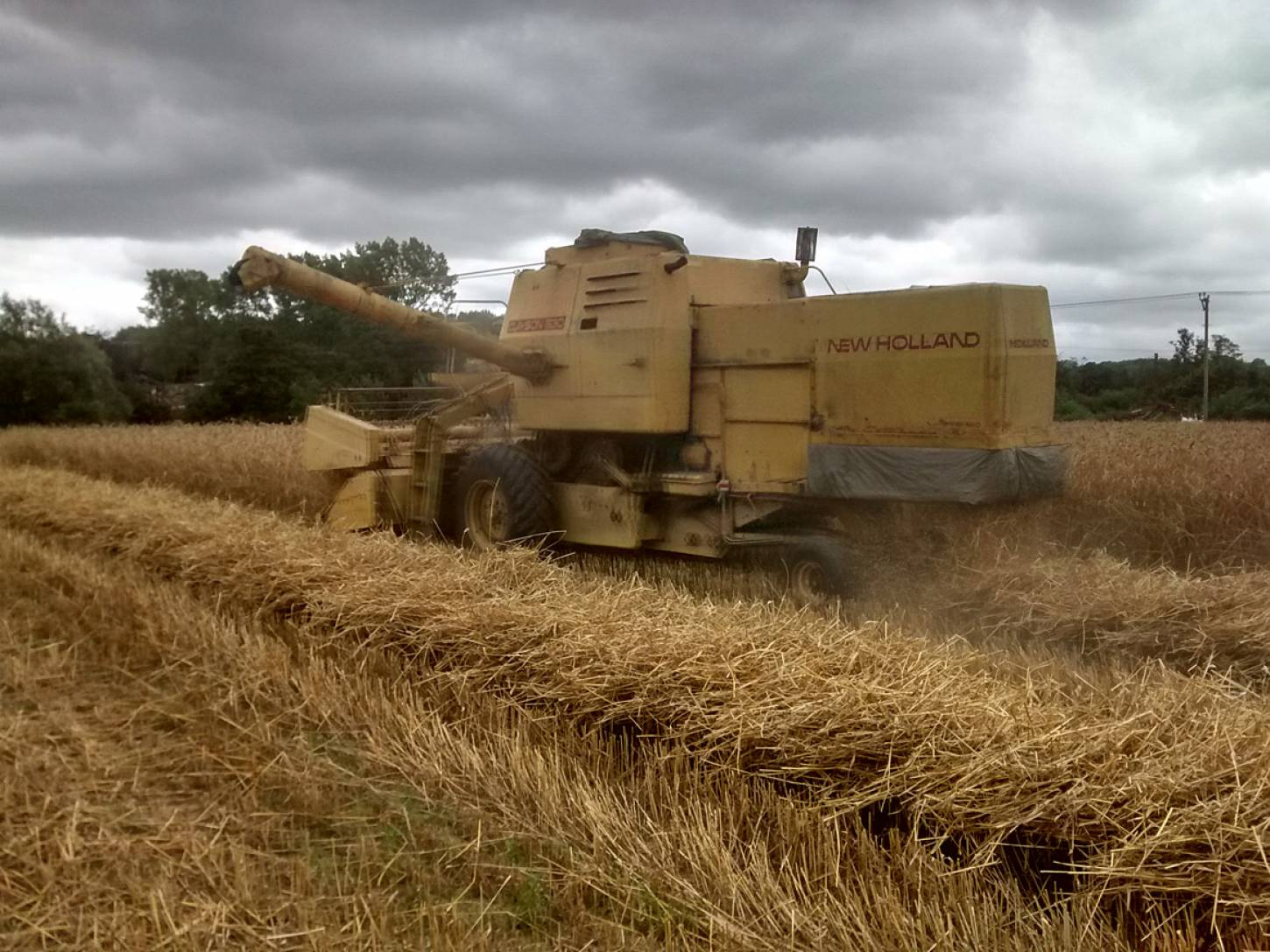 WoWo combine harvest - 12:56pm&nbsp;10<sup>th</sup>&nbsp;Aug.&nbsp;'15  <a href='http://maps.google.com/?t=h&q=50.993305,-0.003775&z=15' target=_blank><img src='http://www.brockwell-bake.org.uk/img/marker.png' style='border:none;vertical-align:top' height=16px></a>