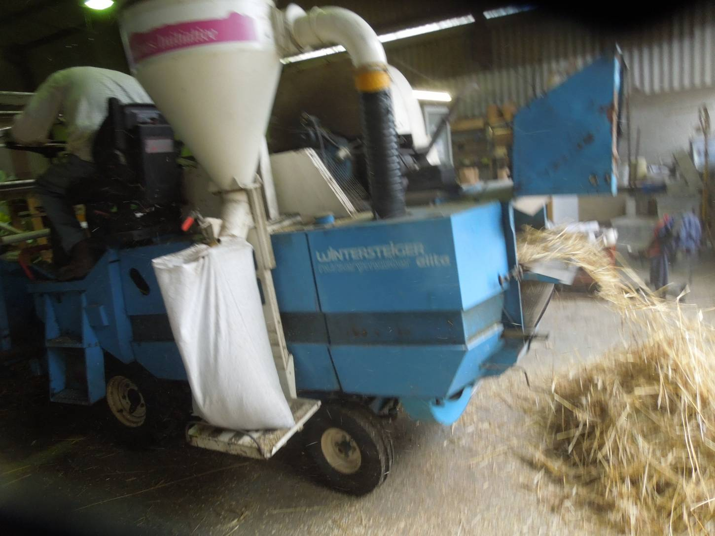 threshing out our named lines sheaves with help of plot combine and Rodger and Martin from <a href='http://www.agrifactors.co.uk/' target=_blank>Agrifactors</a> - 11:16am&nbsp;16<sup>th</sup>&nbsp;Sep.&nbsp;'15