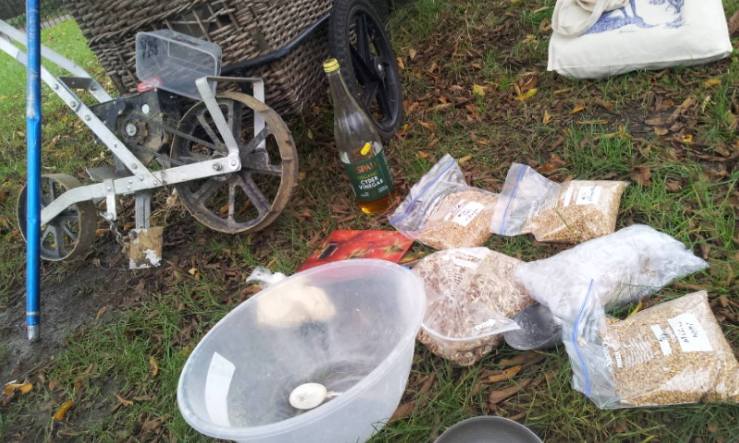 Day 1 sowing on Ruskin Park, 'the Wheats Field', the gear and seed,  pics <a href='http://www.brockwellgreenhouses.org.uk/welcome/' target=_blank>Ann Bodkin</a> - 2:33pm&nbsp;28<sup>th</sup>&nbsp;Nov.&nbsp;'15