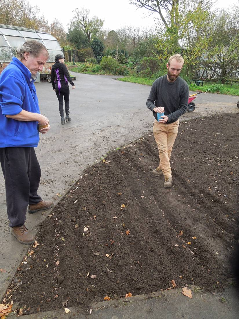 sowing at the <A href='http://www.brockwellgreenhouses.org.uk/welcome/' target=_blank>Brockwell Community Greenhouses</a> - 1:53pm&nbsp;26<sup>th</sup>&nbsp;Nov.&nbsp;'15