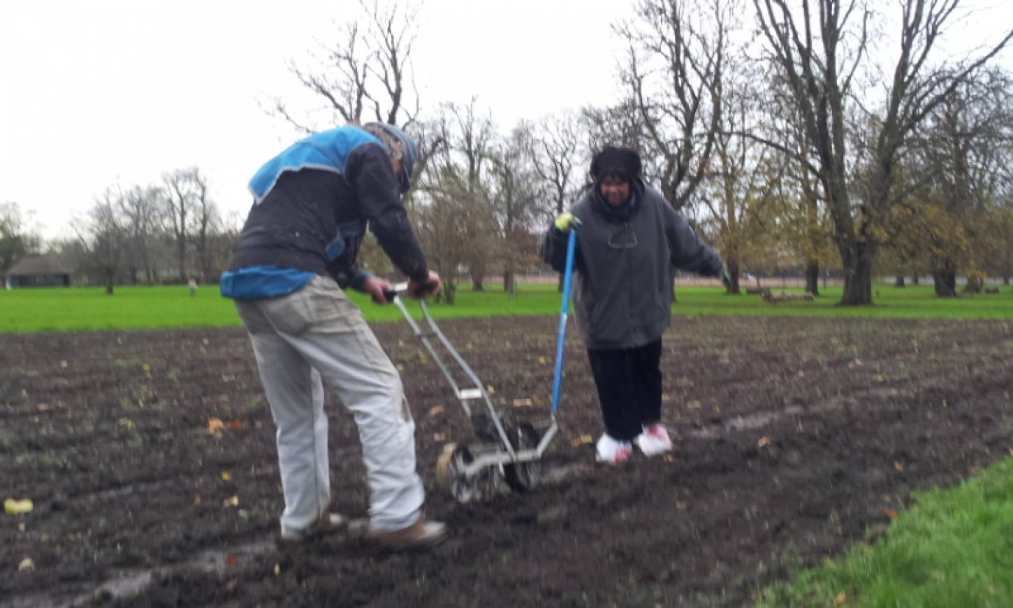 Day 1 sowing on Ruskin Park, 'the Wheats Field', Andy and Annick drilling, pics <a href='http://www.brockwellgreenhouses.org.uk/welcome/' target=_blank>Ann Bodkin</a> - 3:16pm&nbsp;28<sup>th</sup>&nbsp;Nov.&nbsp;'15