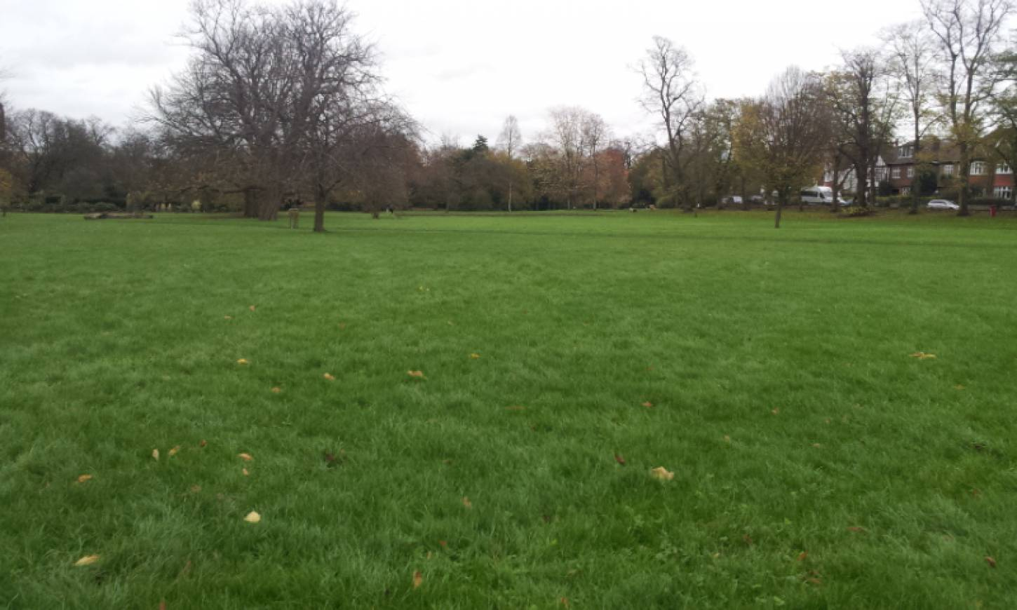 Day 1 sowing on Ruskin Park, 'the Wheats Field', the site, pics <a href='http://www.brockwellgreenhouses.org.uk/welcome/' target=_blank>Ann Bodkin</a> - 2:27pm&nbsp;28<sup>th</sup>&nbsp;Nov.&nbsp;'15