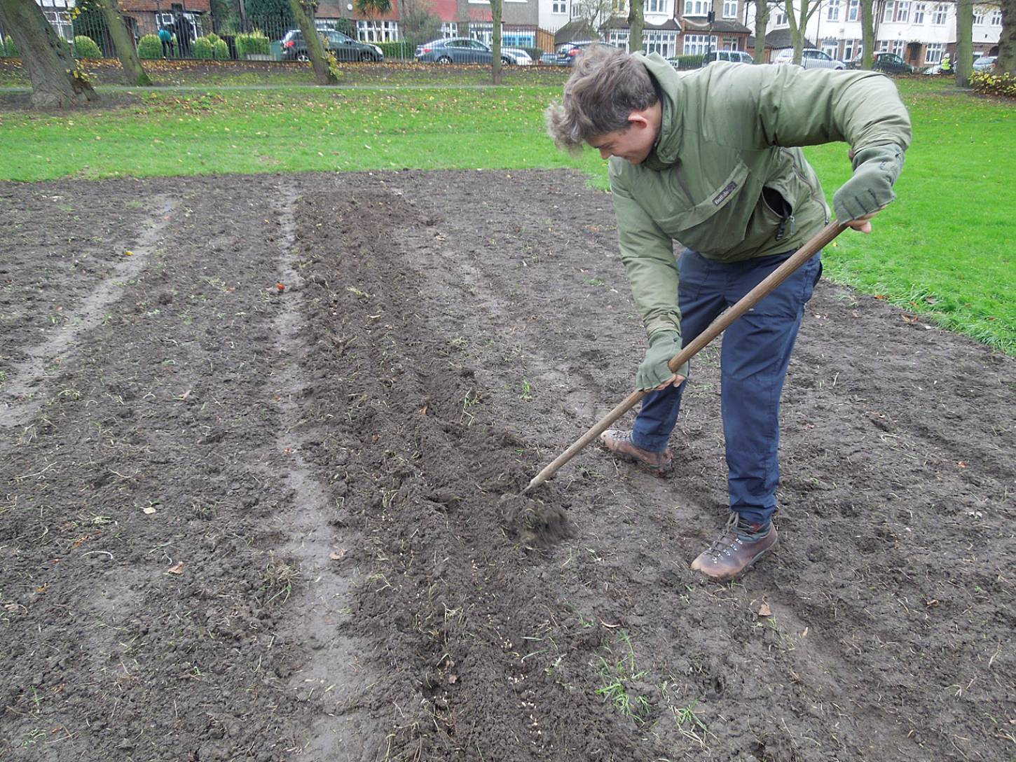 Day 3 sowing on Ruskin Park, putting in Blue Cone Rivet with Mattew Robinson from <a href='http://www.fortyhallfarm.org.uk/' target=_blank>Forty Hall Farm</a> - 2:43pm&nbsp;30<sup>th</sup>&nbsp;Nov.&nbsp;'15