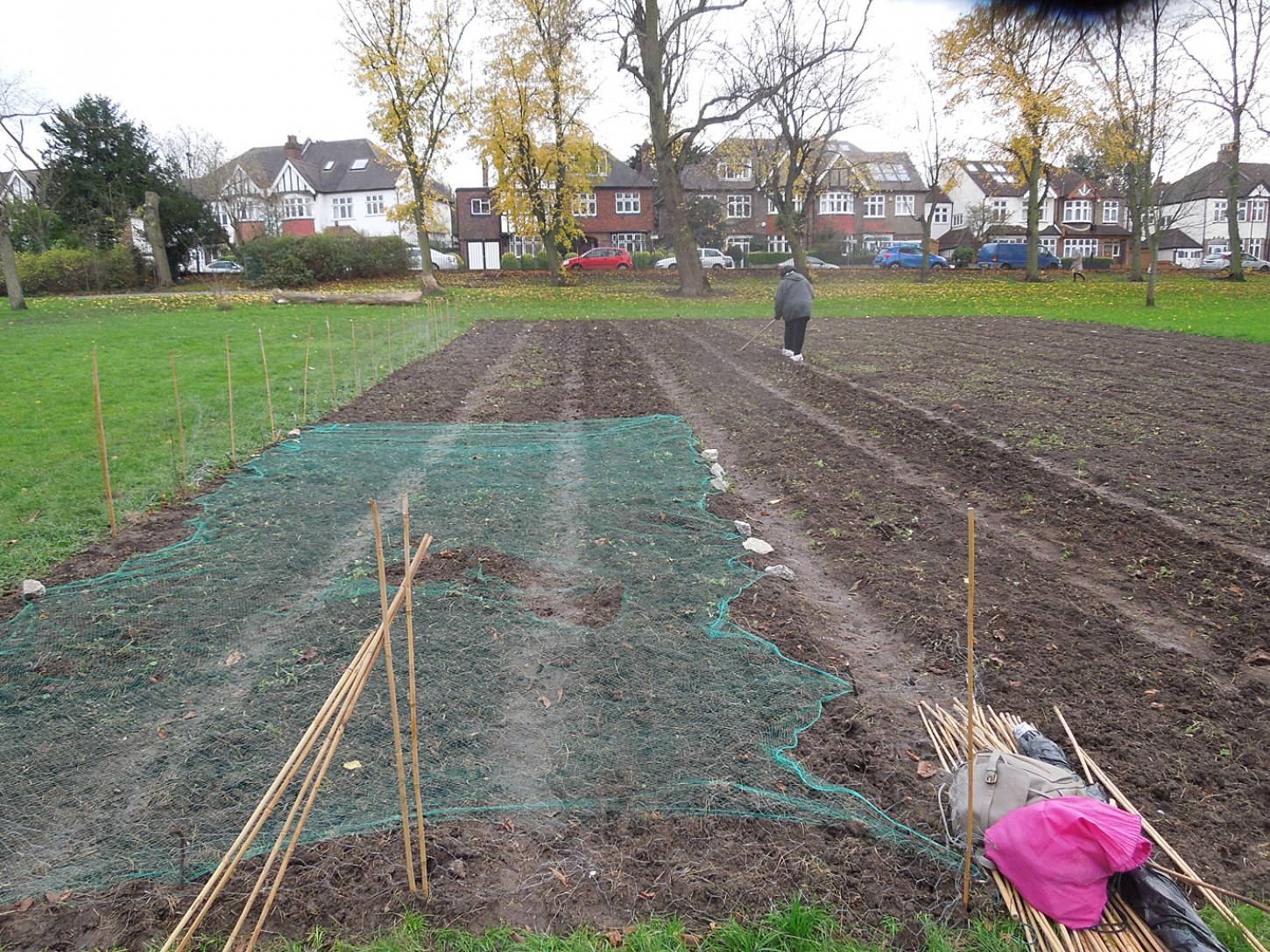 Day 4 sowing on Ruskin PArk With Annick Alet from the <A href='http://www.brixtonwindmill.org/home' target=_blank>Friends of Windmill Gardens</a> - 2:42pm&nbsp;3<sup>rd</sup>&nbsp;Dec.&nbsp;'15
