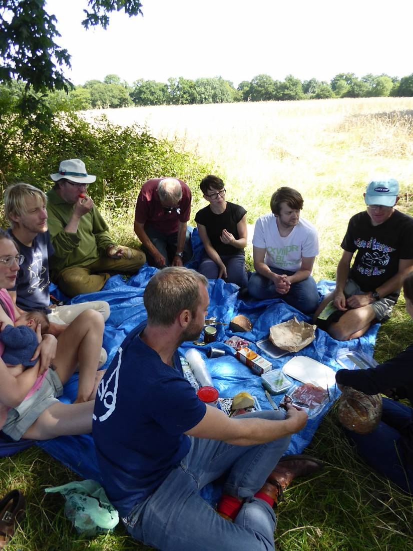 harvest elevenses, our manual harvest at Lodge Farm - 11:51am&nbsp;13<sup>th</sup>&nbsp;Aug.&nbsp;'17