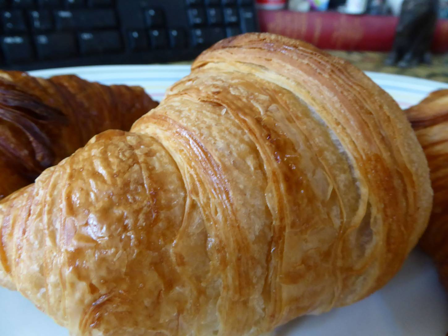 croissant test, L <a href='https://www.instagram.com/little_bread_pedlar/' target='_blank'>Little Bread Pedlar</a> (84g) M (ours) <a href='https://www.instagram.com/cablebakery/' target='_blank'>Cable Bakery</a> (92g) R <a href='https://www.instagram.com/thebakehouseputney/' target='_blank'>Bakehouse Putney</a> (102g). Bake on ours rather light ... - 2:01pm&nbsp;15<sup>th</sup>&nbsp;Oct.&nbsp;'17  <a href='http://maps.google.com/?t=h&q=51.471028,-0.103839&z=18&output=embed' target=_blank><img src='http://www.brockwell-bake.org.uk/img/marker.png' style='border:none;vertical-align:top' height=16px></a>