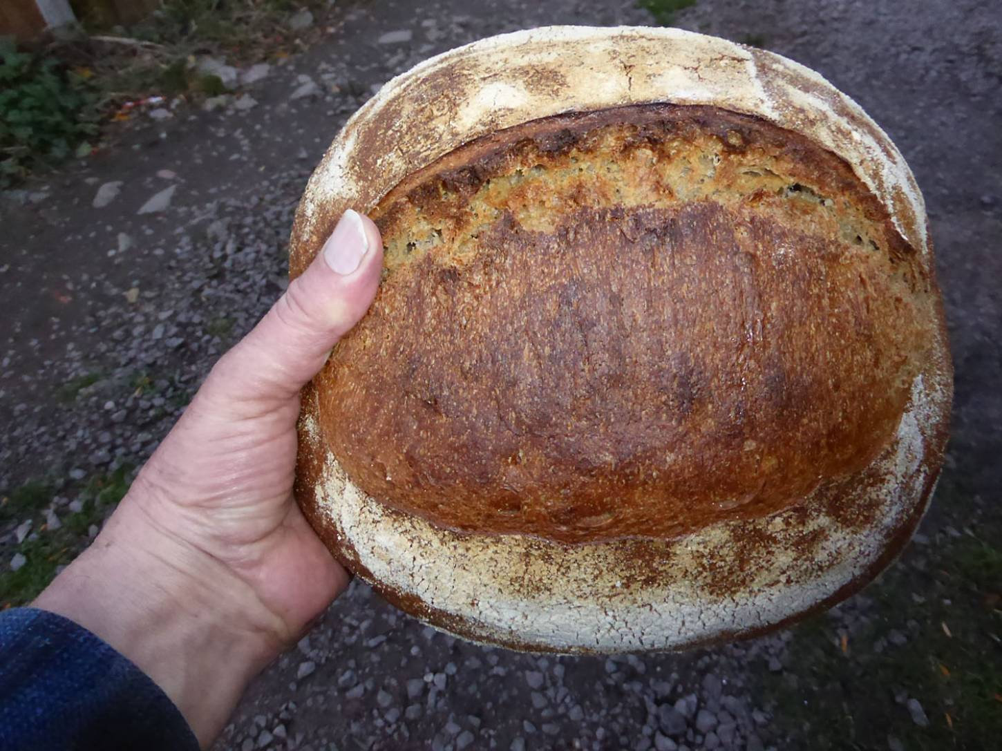 first baking test for the Miller's Choice, without orange juice - 5:00pm&nbsp;23<sup>rd</sup>&nbsp;Nov.&nbsp;'17  <a href='http://maps.google.com/?t=h&q=51.481239,-0.108564&z=18&output=embed' target=_blank><img src='http://www.brockwell-bake.org.uk/img/marker.png' style='border:none;vertical-align:top' height=16px></a>