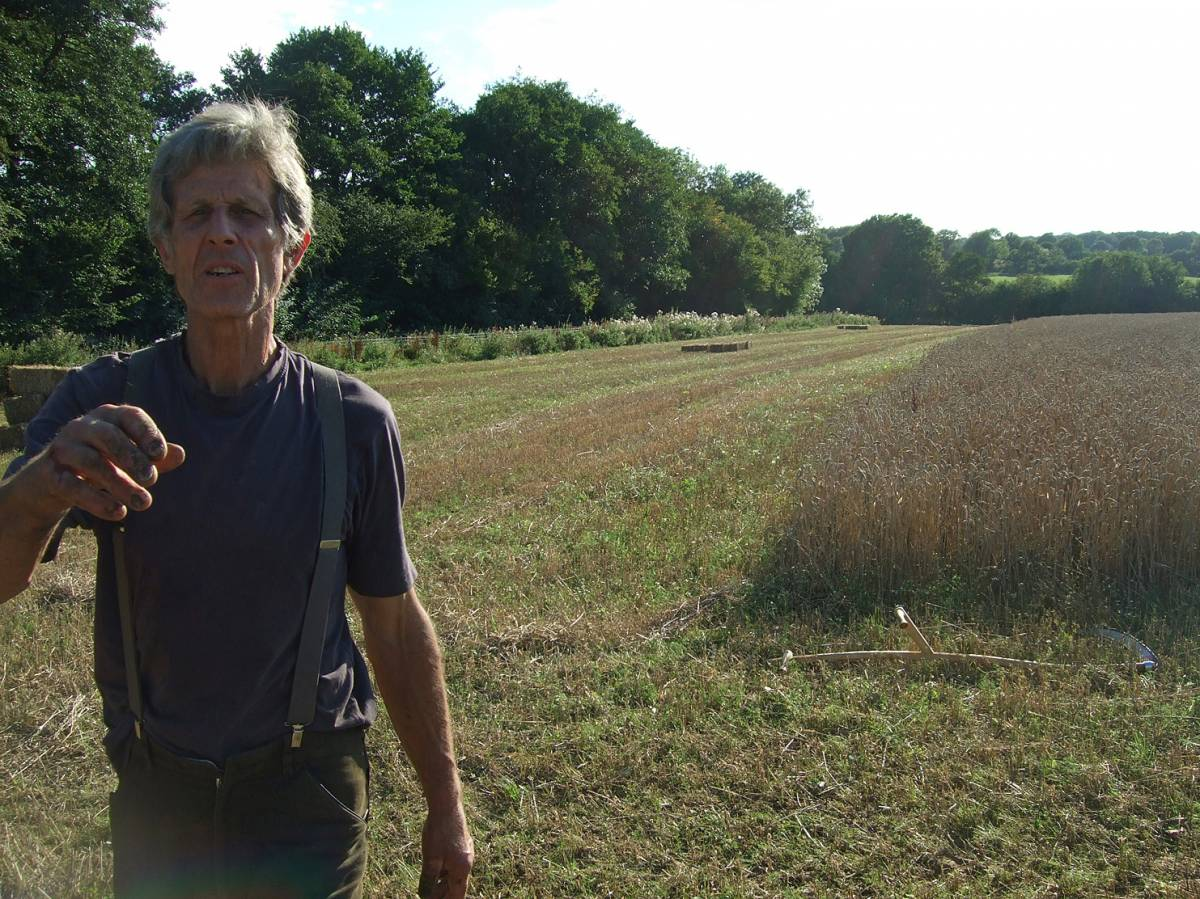 farmer Michael Duveen at our wheat patch the evening before harvest day, scythe cradle trials for wheat reaping, BBA harvest on Hophurst Farm (<a href='http://www.jacobsladderfarms.co.uk' target=_blank>Jacobs Ladder Farms</a>) 21/8/11