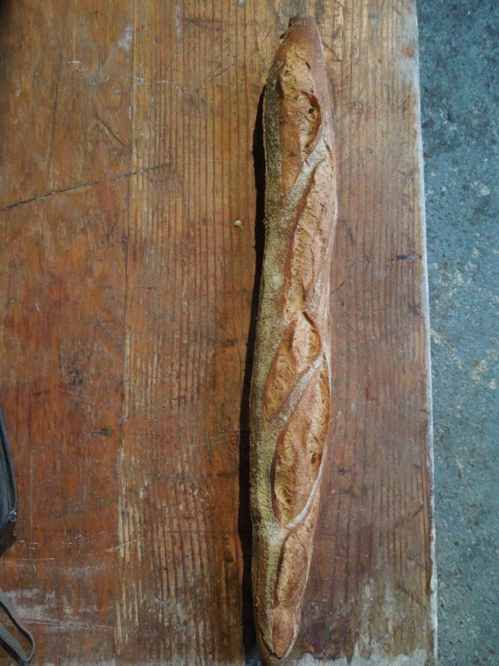 baguette with WoWo Magister wheat - 9:52am&nbsp;25<sup>th</sup>&nbsp;Aug.&nbsp;'14