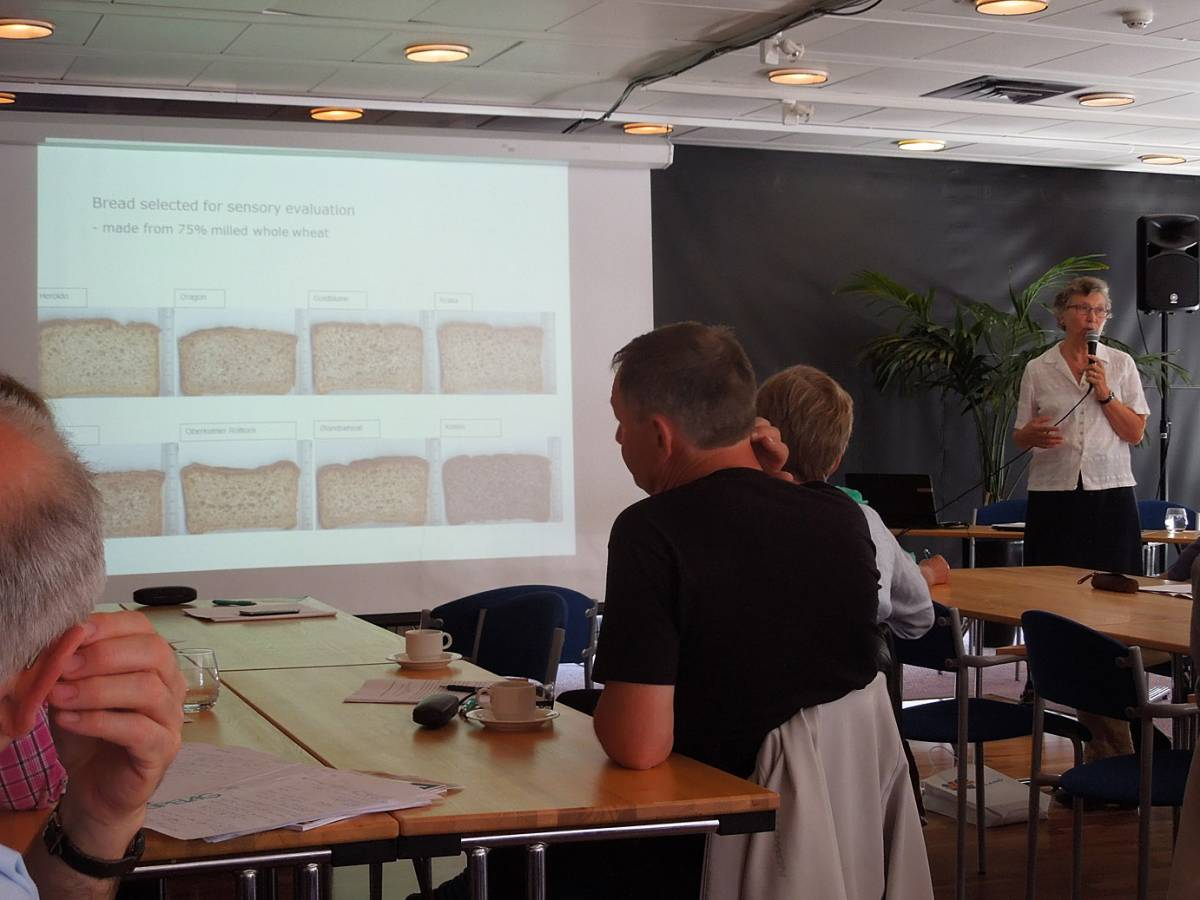 BBA > Nordic > Caroline Rüdinger gives a very interesting talk on blind taste and aroma tests for different wheats - 7:55am&nbsp;15<sup>th</sup>&nbsp;Jul.&nbsp;'14