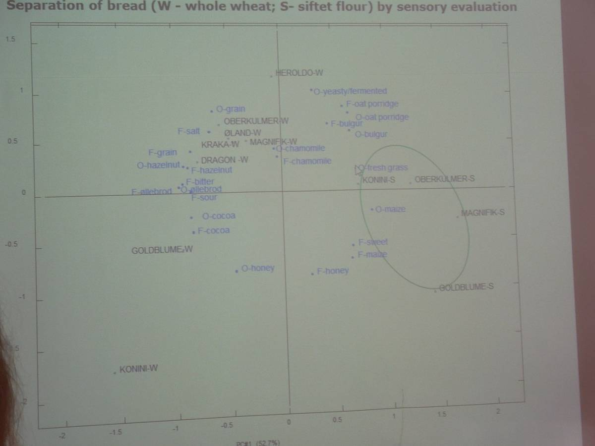 BBA > Nordic > Caroline Rüdinger gives a very interesting talk on blind taste and aroma tests for different wheats - 7:58am&nbsp;15<sup>th</sup>&nbsp;Jul.&nbsp;'14