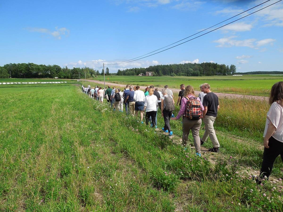 BBA > Nordic > visit Joomla research station heritage cereals trials - 12:31pm&nbsp;15<sup>th</sup>&nbsp;Jul.&nbsp;'14