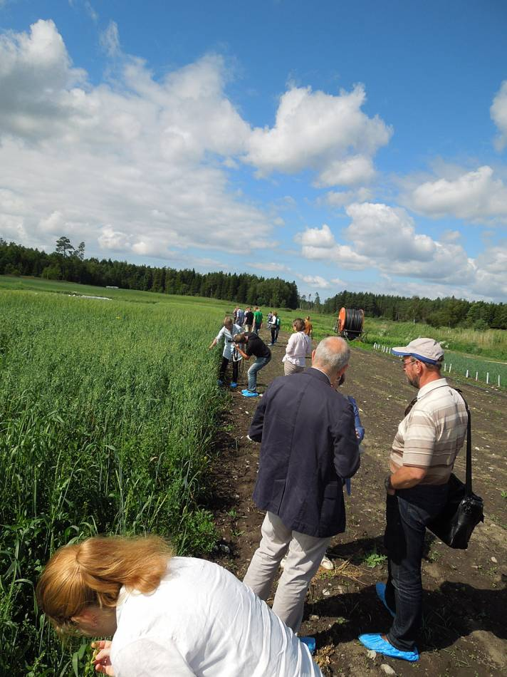 BBA > Nordic > visit Joomla research station heritage cereals trials - 12:55pm&nbsp;15<sup>th</sup>&nbsp;Jul.&nbsp;'14