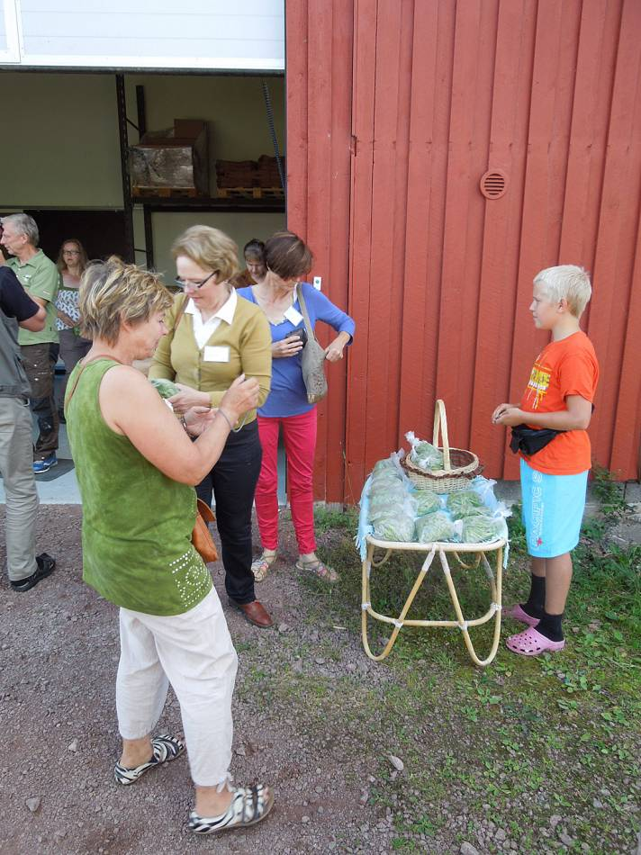 BBA > Nordic > Överängs mill,  Ödkarby, Saltvik > young entrepreneur with peas - 8:05am&nbsp;16<sup>th</sup>&nbsp;Jul.&nbsp;'14