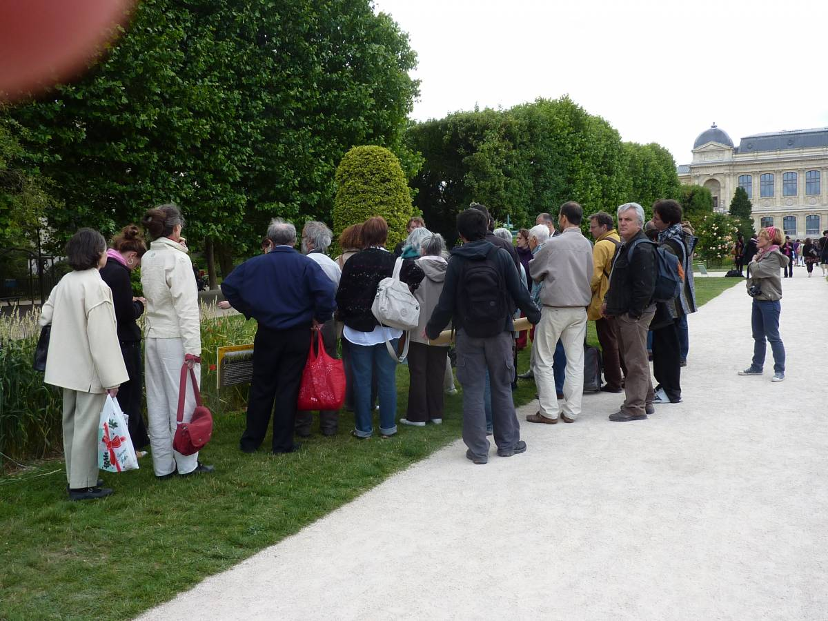 heritage wheat exhibition at the Jarden des Plantes, Paris - 2:12pm&nbsp;19<sup>th</sup>&nbsp;Jun.&nbsp;'10