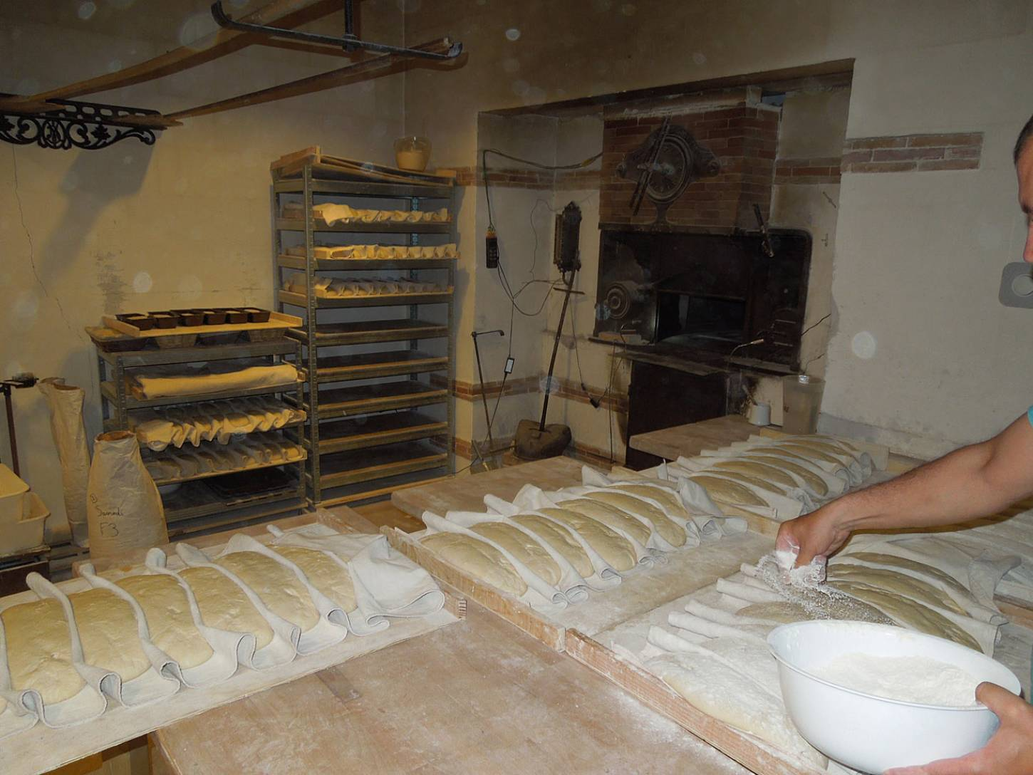 visit to the boulangers paysan of <a href='https://www.facebook.com/Ferme.Campagnolle' target=_blank>Ferme Campognole</a> - bread ready for baking - 8:21am&nbsp;29<sup>th</sup>&nbsp;May.&nbsp;'15