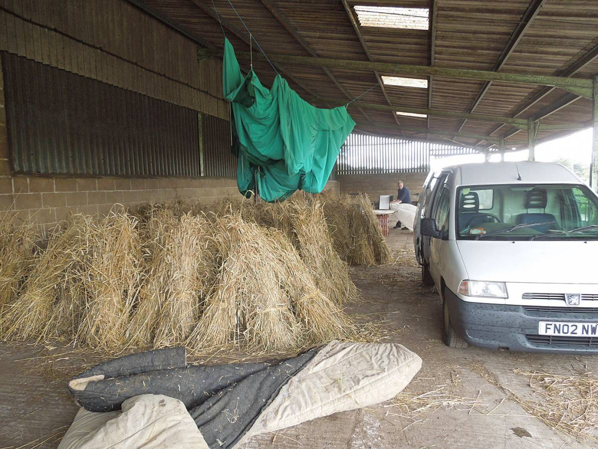 harvest ready for threshing - Westmill Farm, Oxon - 11:18am&nbsp;25<sup>th</sup>&nbsp;Aug.&nbsp;'12