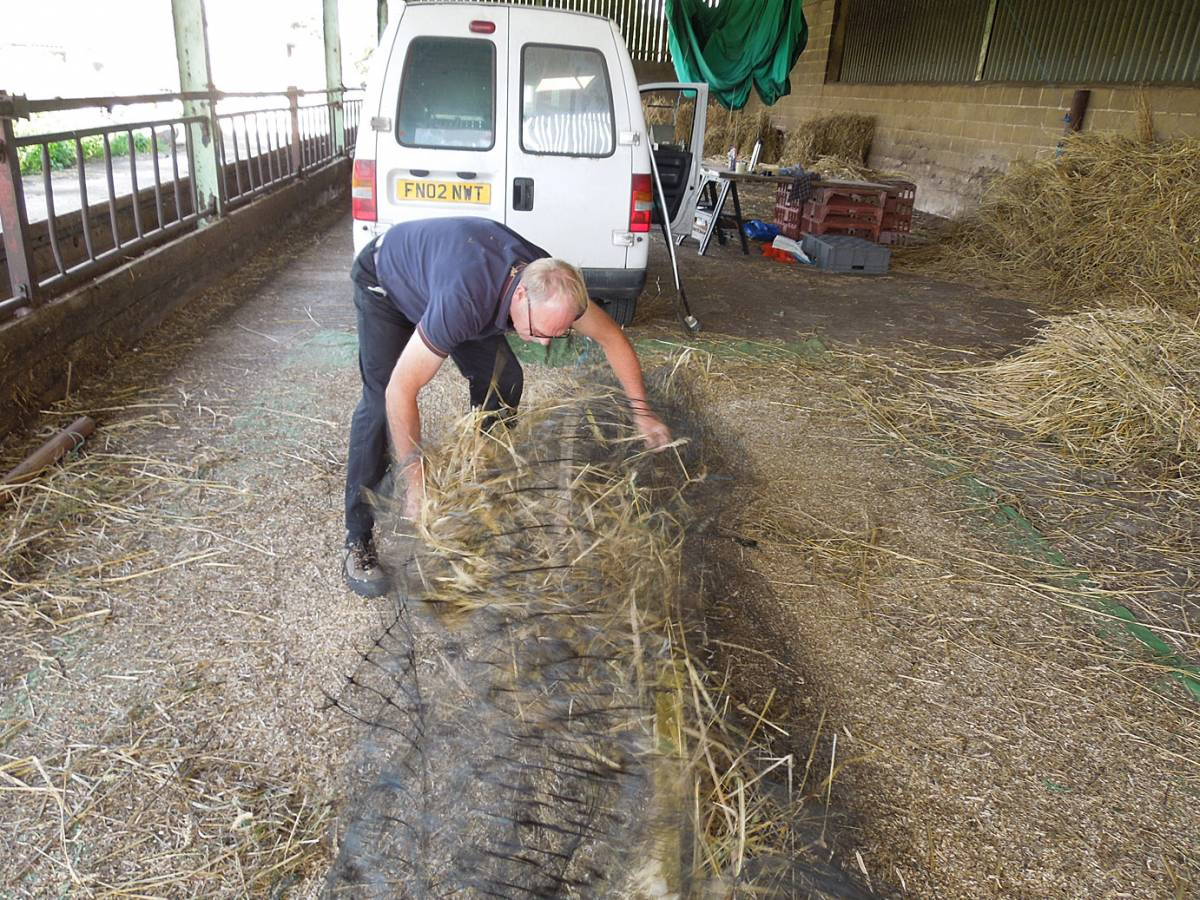 pulling off straw with netting after threshing - Westmill Farm, Oxon - 11:20am&nbsp;26<sup>th</sup>&nbsp;Aug.&nbsp;'12