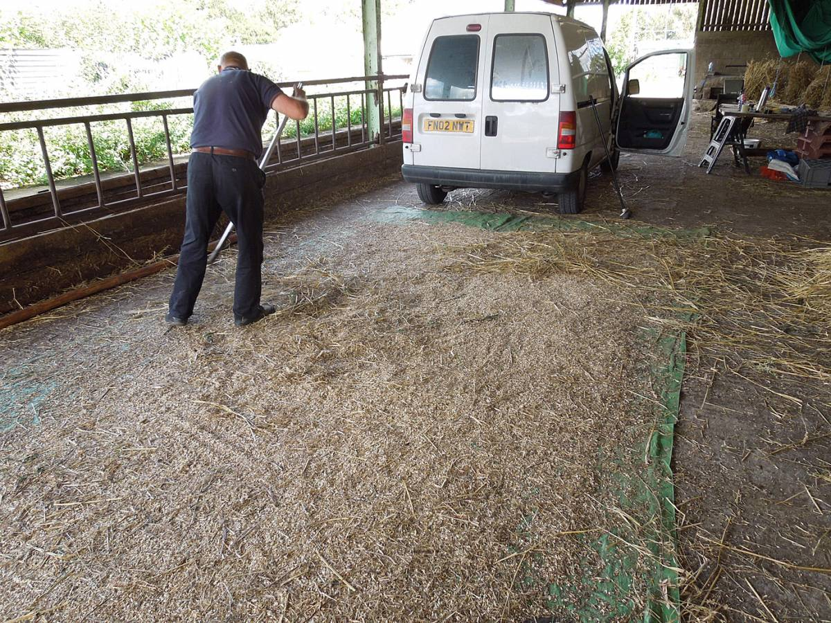 sweeping up chaff and grain - Westmill Farm, Oxon - 11:21am&nbsp;26<sup>th</sup>&nbsp;Aug.&nbsp;'12