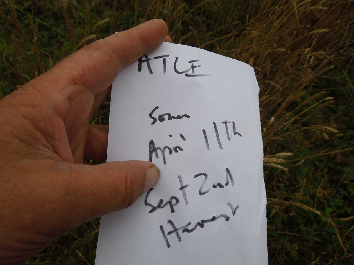 Atle - WoWo Farm harvest - 12:01pm&nbsp;2<sup>nd</sup>&nbsp;Sep.&nbsp;'12