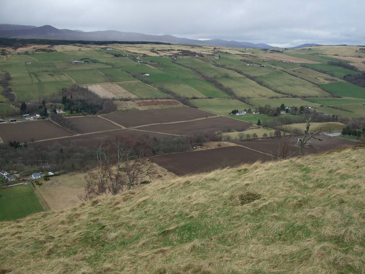 LLD forum 2012, Strathpeffer, on walk with Adam from Organiclea over to hill fort - 4:51pm&nbsp;11<sup>th</sup>&nbsp;Mar.&nbsp;'12