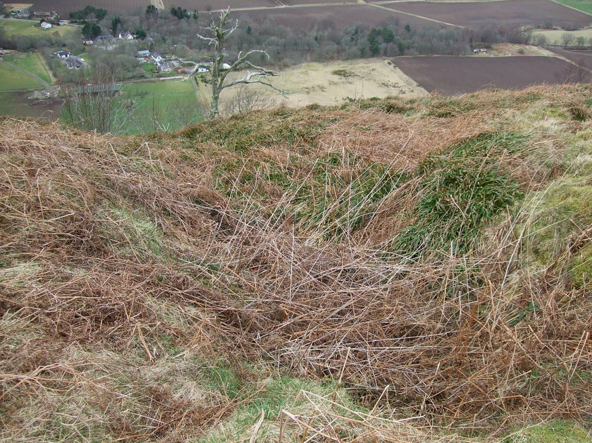 LLD forum 2012, Strathpeffer, on walk with Adam from Organiclea over to hill fort, defensive ditch - 4:52pm&nbsp;11<sup>th</sup>&nbsp;Mar.&nbsp;'12