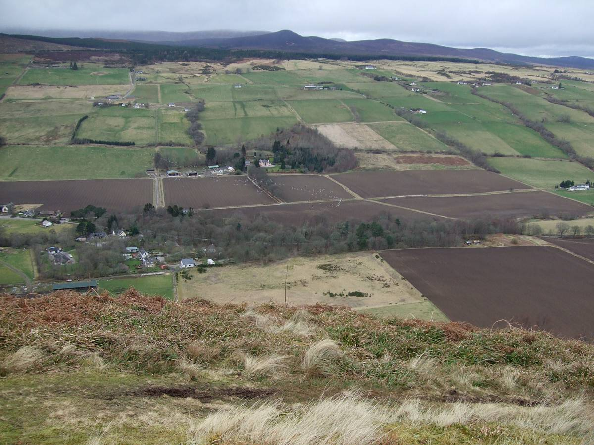 LLD forum 2012, Strathpeffer, geese on the move below fort - 4:56pm&nbsp;11<sup>th</sup>&nbsp;Mar.&nbsp;'12